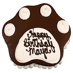 Birthday Cakes For Dogs Best Bakery In Boston