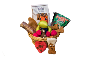 treat of the month club for dogs, best dog bakery in Boston