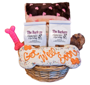 get well soon gourmet dog basket, New England's gourmet dog bakery